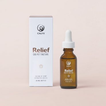 cbd-oil-for-pets-relief